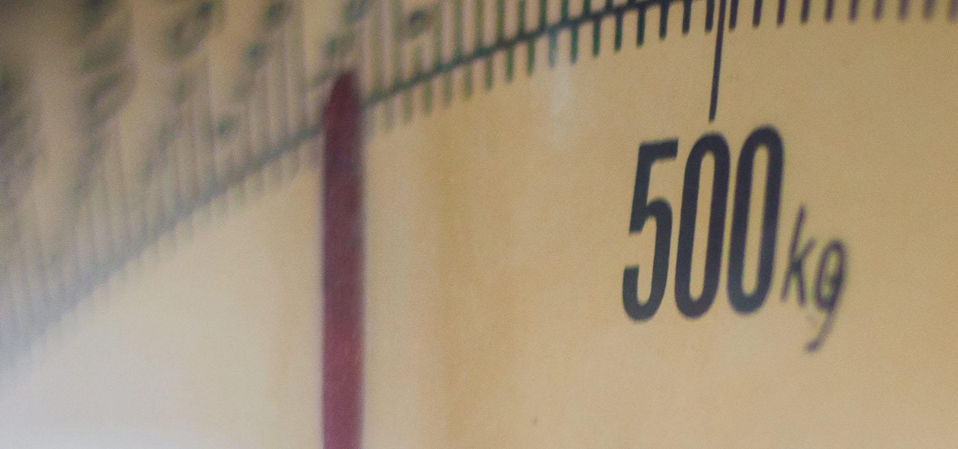 Guide - Hvad vejer affald