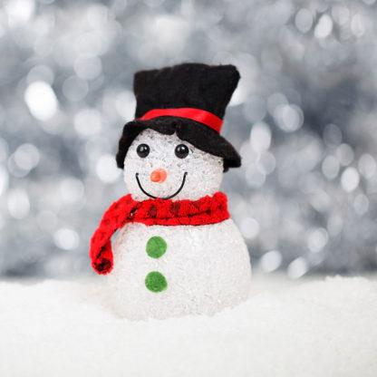 Vi udfører juledekoration
