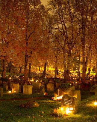 Lys kirkegård