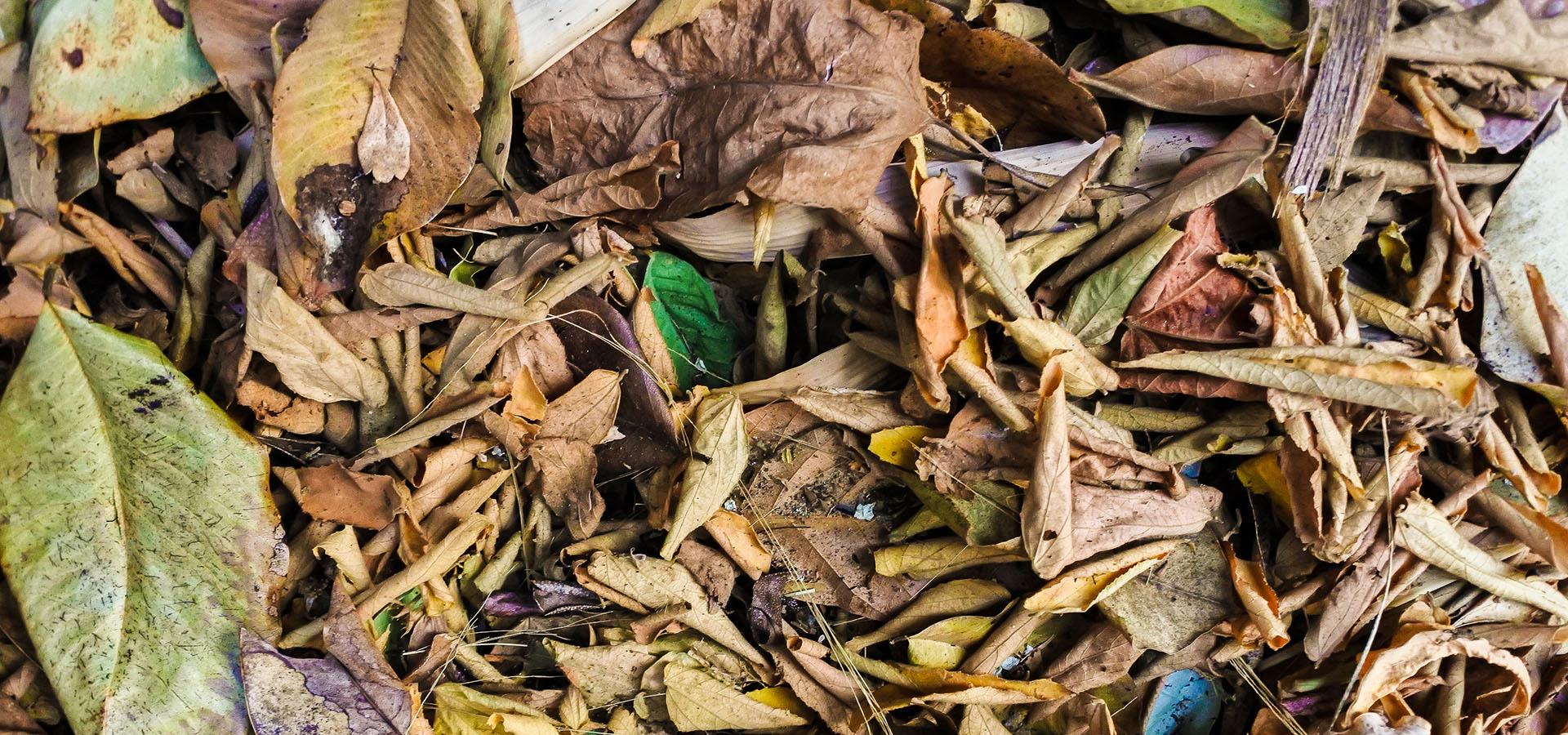 Haveaffald blade fjernes