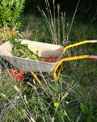 Praktisk hjælp i haven