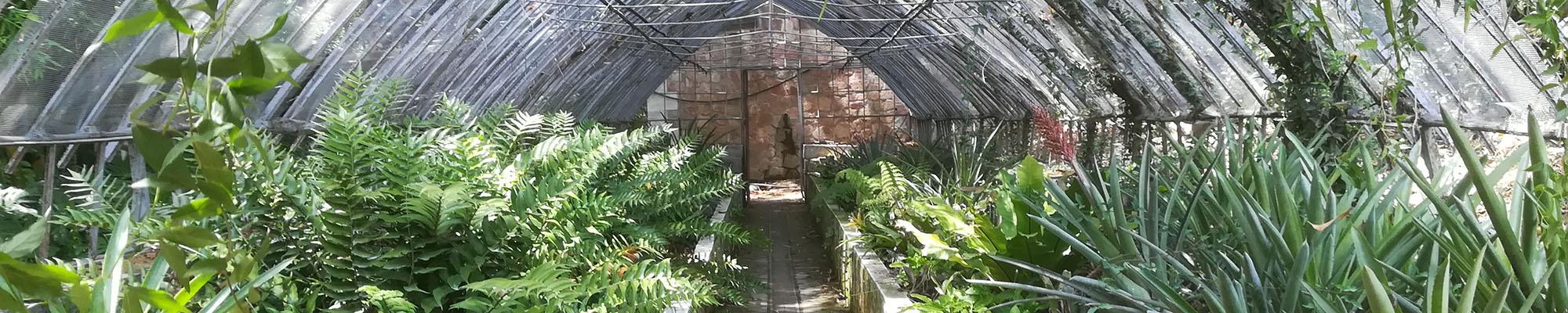 have gartner drivhus